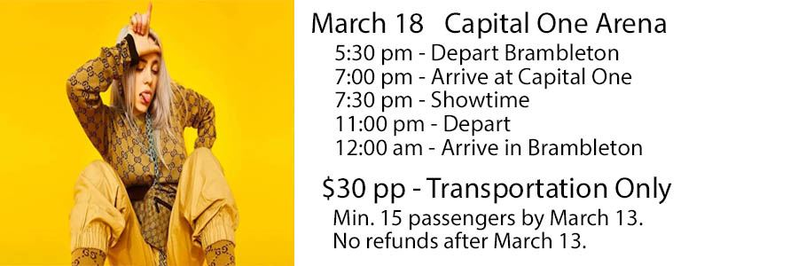 Billie Eilish Website