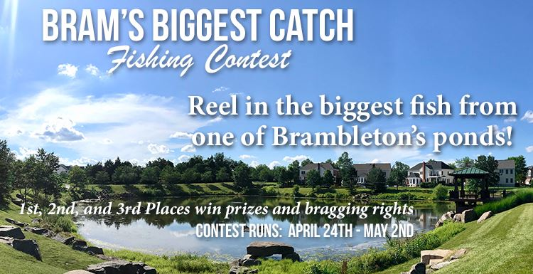Biggest Catch Fishing Contest 2021 - website
